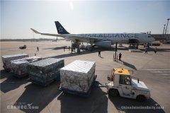 科伦坡海运费国航包机运送山东省联合工作组飞赴伦敦
